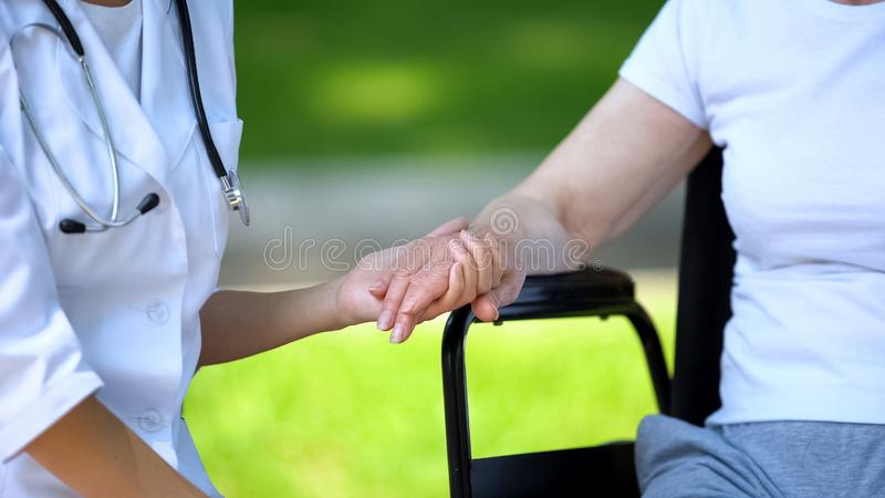 Female therapist holding hand of disabled elderly woman in wheelchair, outdoors royalty free stock photos