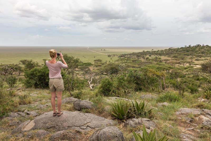 Female tourist looking through binoculars on African safari in Serengeti national park. Tanzania, Afrika. Female tourist looking through binoculars on African royalty free stock photography