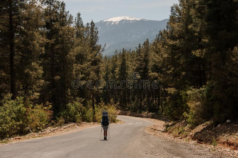 Female tourist walking on a forest road. Female tourist with backpack walking on a forest gravel road royalty free stock images