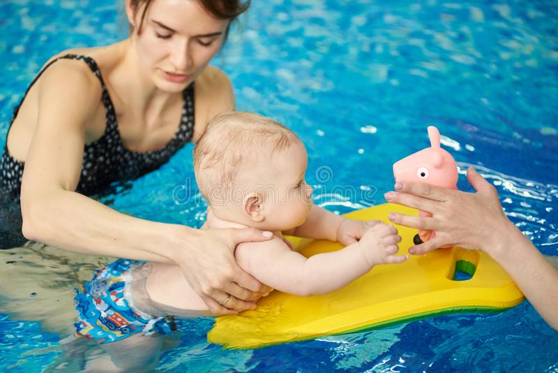 Trainer carrying out swimming courses. Baby floating with board and looking at toy in cropped hands. Healthy development stock image