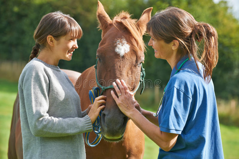Female Vet Examining Horse In Field With Owner stock photo