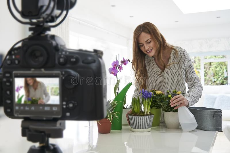 Female Vlogger Making Social Media Video About Houseplant Care For The Internet royalty free stock photos