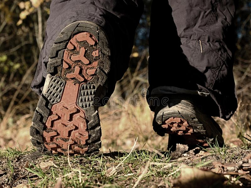 Female walking in high trekking boots on autumn path. Female walking in high trekking boots on the background of leaves and trees trendy trail summer style stalk stock images