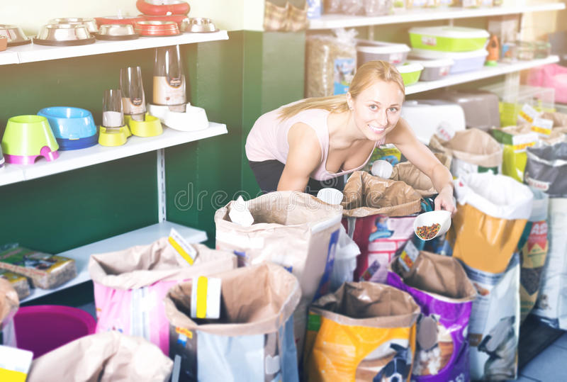 Female woman looking through different treats for dogs royalty free stock photos