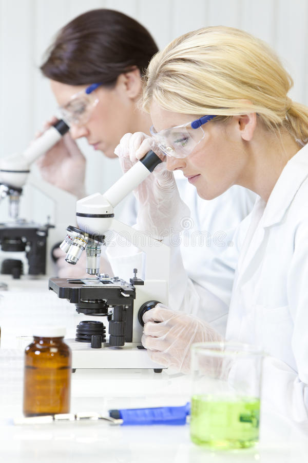 Download Females, Scientific On Microscopes In Laboratory Royalty Free Stock Image - Image: 25356296