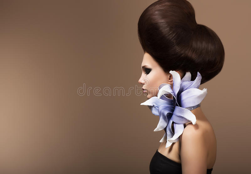 Dénommer. Femme magnifique de mode avec la coiffure à la mode. Poils de Brown photographie stock libre de droits