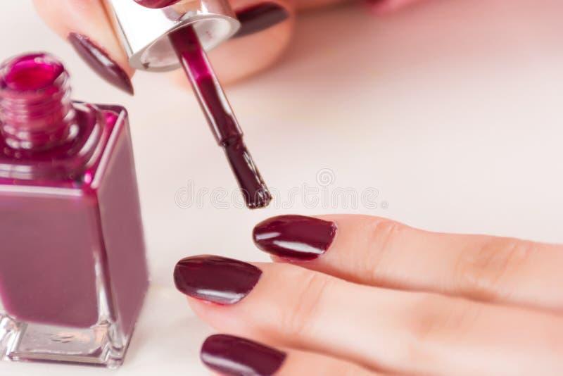 Femelle avec le pinceau et bouteille appliquant le vernis à ongles de manucure de vin rouge sur le doigt photos libres de droits