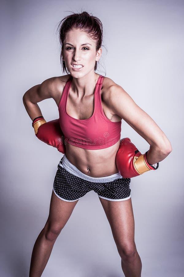 femelle fâchée de boxeur photos libres de droits