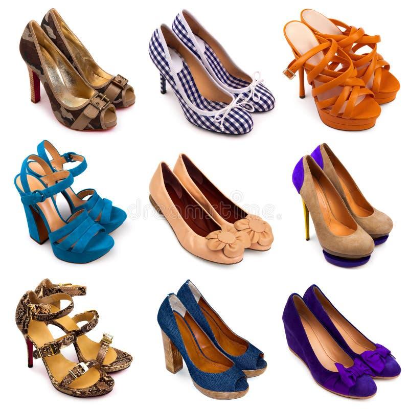 Femelle multicolore shoes-13 photographie stock libre de droits