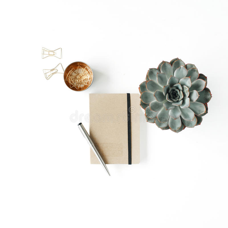 Feminine desk workspace with succulent, diary and golden clips on white background royalty free stock image