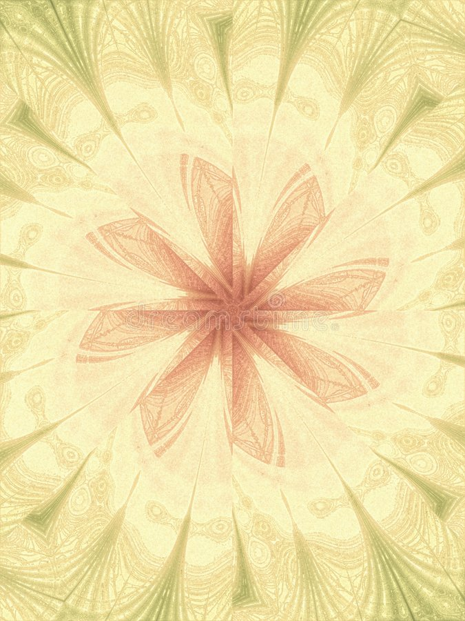Feminine Floral Backgrounds Stock Image