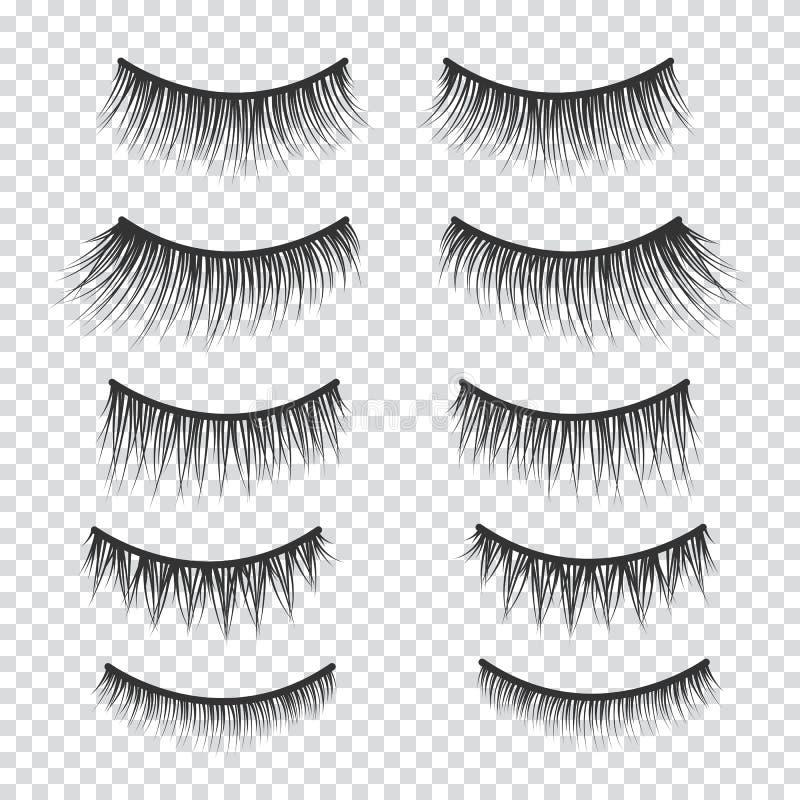 Free Feminine Lashes Vector Set. False Eyelashes Stock Image - 112091541
