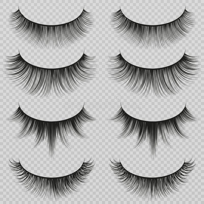 Feminine lashes vector set. Realistic false eyelashes fashion collection stock illustration