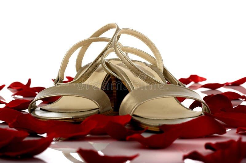 Download Feminine Sandals Stock Photo - Image: 1647580