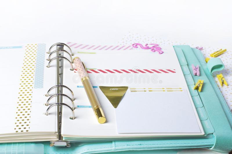 Feminine stationery: colorful paper binder clips palm and flamin royalty free stock photography
