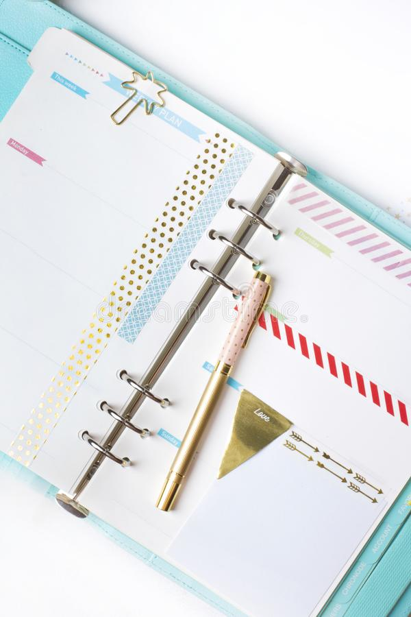 Feminine stationery: colorful paper binder clips palm and flamin royalty free stock image