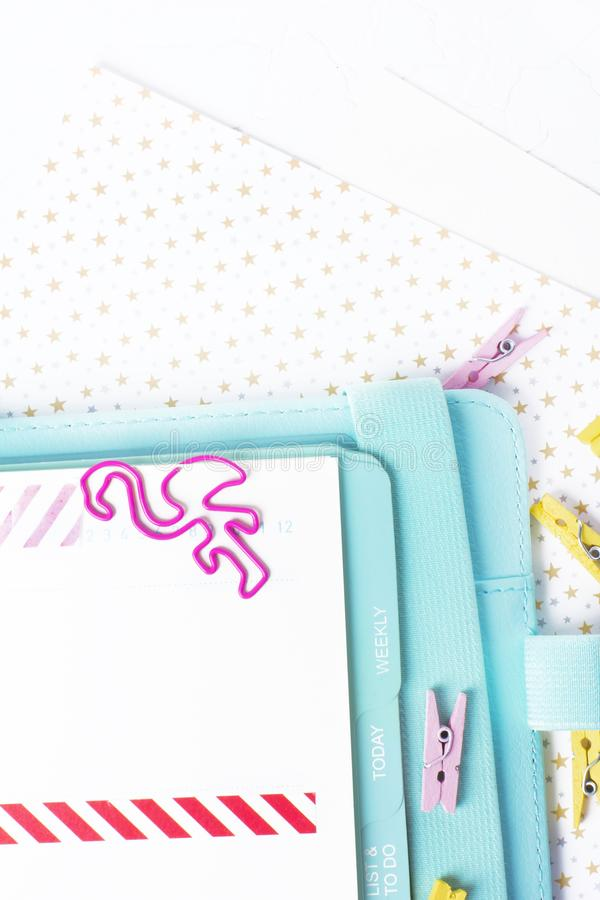 Feminine stationery: colorful paper binder clips palm and flamin stock image