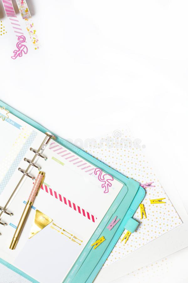 Feminine stationery: colorful paper binder clips palm and flamin royalty free stock photo