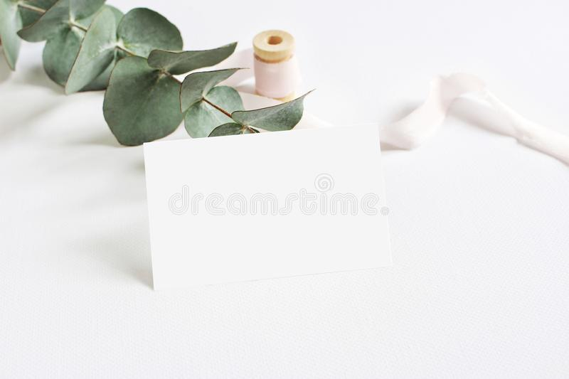Feminine stationery mockup scene with a paper greeting card, spool of pink silk ribbon and Silver dollar eucalyptus stock photo