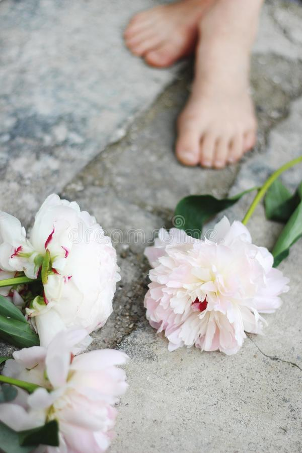 Feminine styled stock photo. Vertical composition. White and pink peony flowers on grunge concrete floor. Defocused kids royalty free stock photography