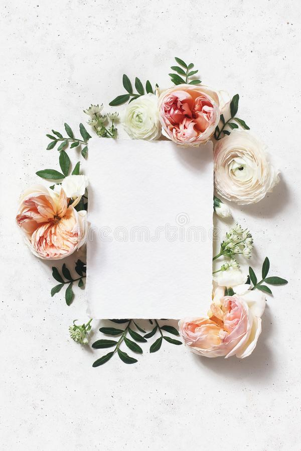 Feminine wedding, birthday mock-up scene. Blank paper greeting card. Floral frame of blush pink English roses. Ranunculus flowers and lentisk leaves, concrete royalty free stock photo