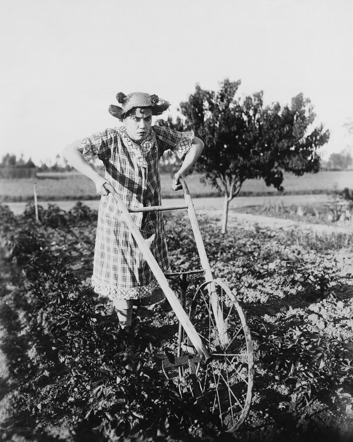 Femme à l'aide de la charrue de marche dans le jardin (toutes les personnes représentées ne sont pas plus long vivantes et aucun  image libre de droits