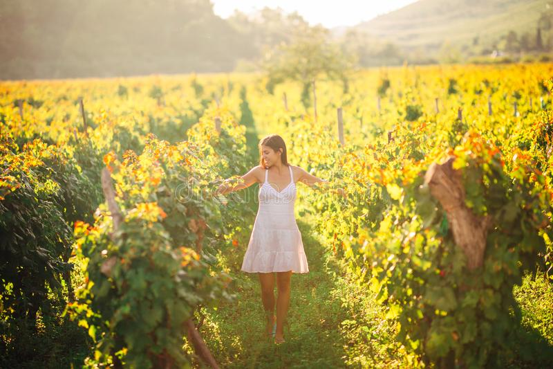 Femme élégante de sourire en nature Joie et bonheur Femelle sereine dans le domaine de raisin de cuve dans le coucher du soleil C photo stock