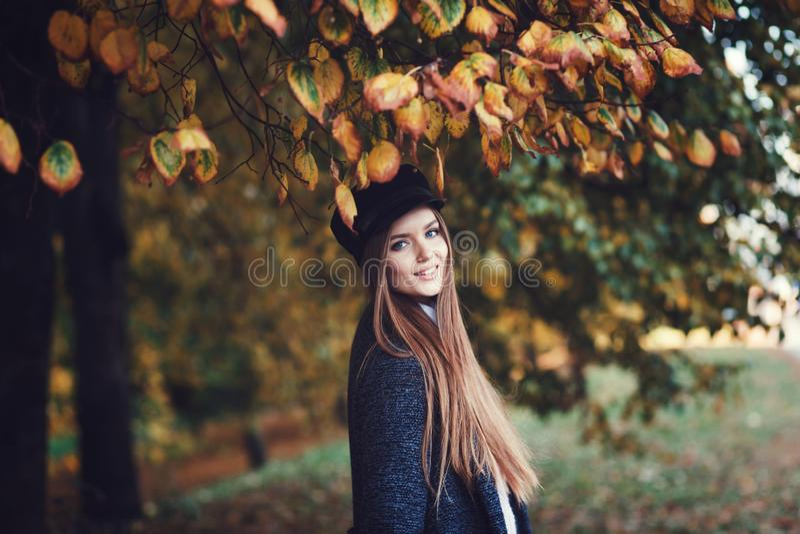 Femme élégante en parc d'automne photographie stock