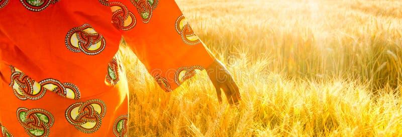 Femme africaine dans des vêtements traditionnels marchant avec sa main sur un champ des cultures au coucher du soleil ou au lever images libres de droits