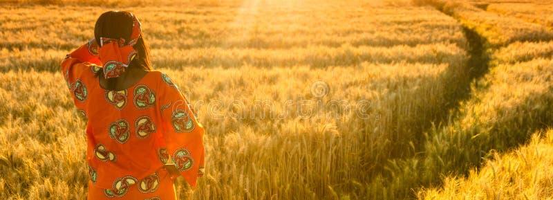 Femme africaine dans des vêtements traditionnels se tenant dans un domaine des cultures au coucher du soleil ou au lever de solei photo libre de droits