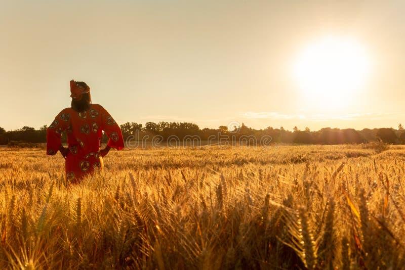 Femme africaine dans des v?tements traditionnels marchant dans un domaine des cultures au coucher du soleil ou au lever de soleil image stock