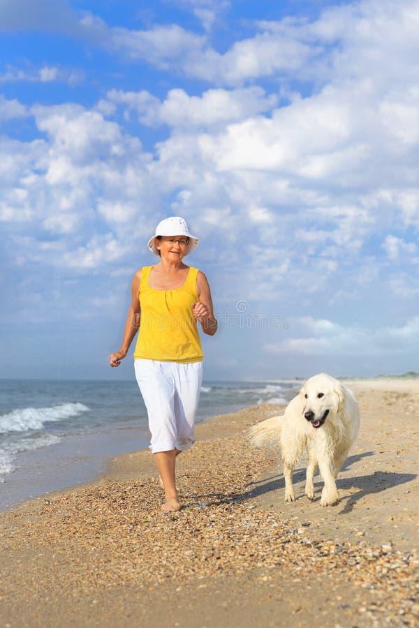 Femme agée courant avec son chien d'arrêt de golder photographie stock