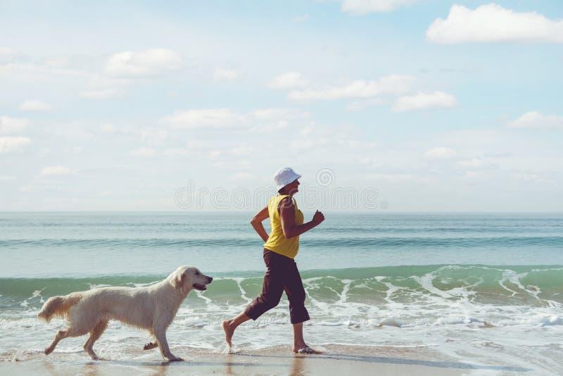 Femme agée courant avec son chien d'arrêt de golder photo stock