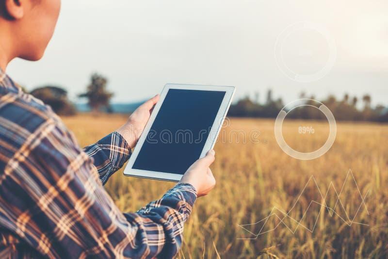 Femme agricole agricole fut?e de technologie et d'agriculture biologique ? l'aide du comprim? de recherches et ?tudiant le d?velo photo stock