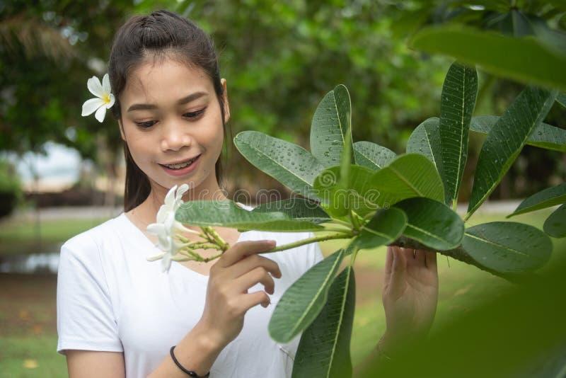 Femme asiatique dans le T-shirt blanc avec le plumeria sur ses cheveux, belle fille image libre de droits