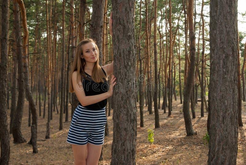 Femme attirante élégante dans la forêt parmi des pins photos stock