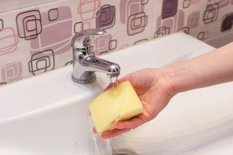 Femme au foyer rinçant outre d'une éponge pour nettoyer la salle de bains sous l'eau courante du bassin de main photo libre de droits