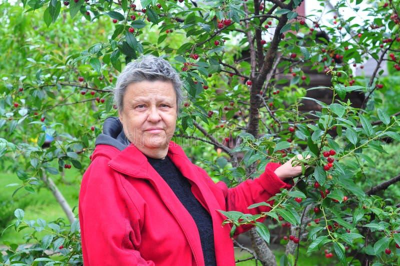 Femme au jardin photo libre de droits