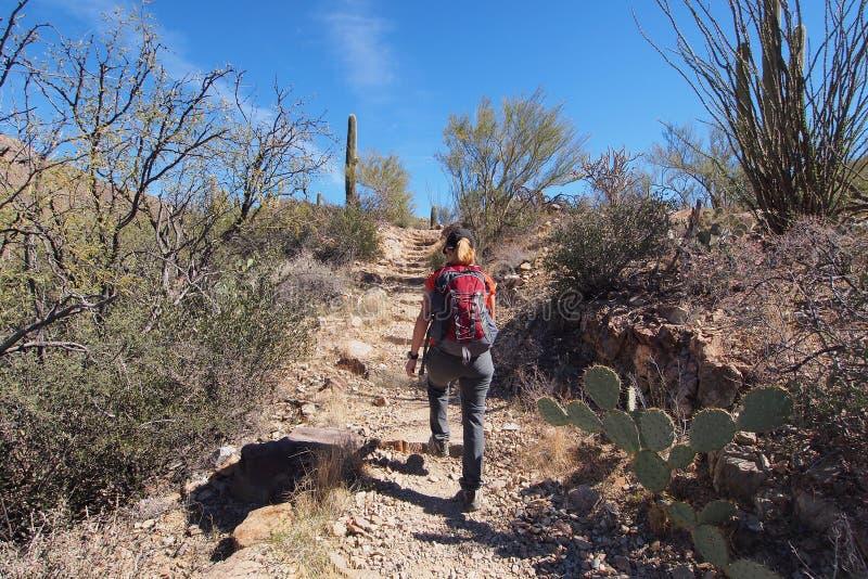 Femme augmentant le Roi Canyon Trail, Arizona photo stock
