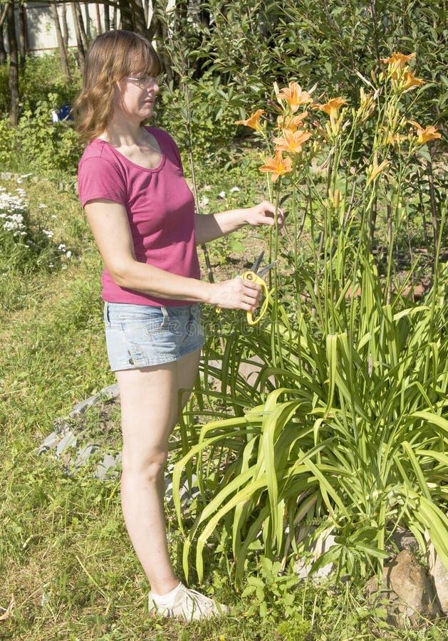 Femme avec des fleurs dans le jardin images libres de droits