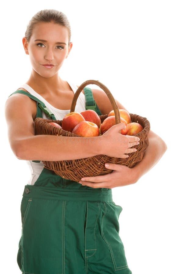 Femme avec des pommes photos libres de droits