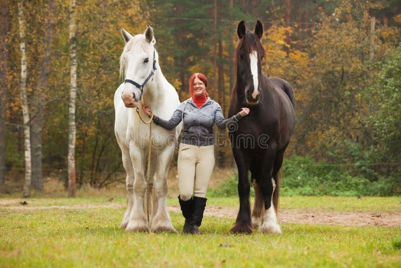 Femme avec deux chevaux de comté photo stock