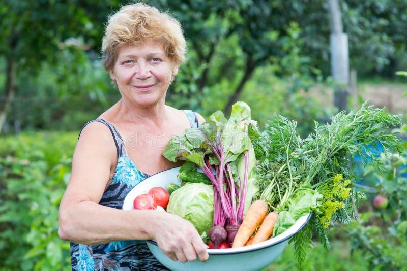 Femme avec la culture des légumes frais photos libres de droits