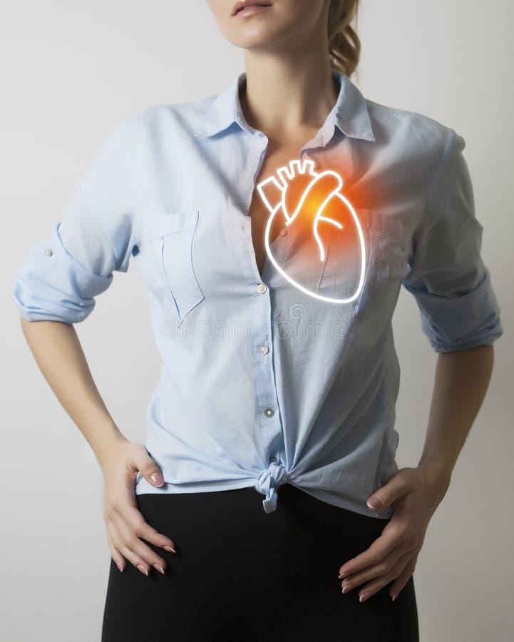 Femme avec la visualisation du coeur d'anatomie images libres de droits