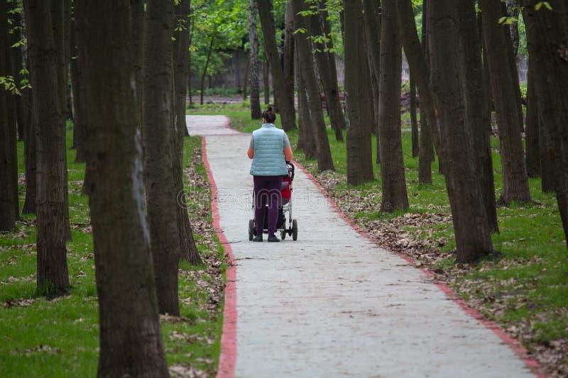 Femme avec la voiture d'enfant en parc image libre de droits