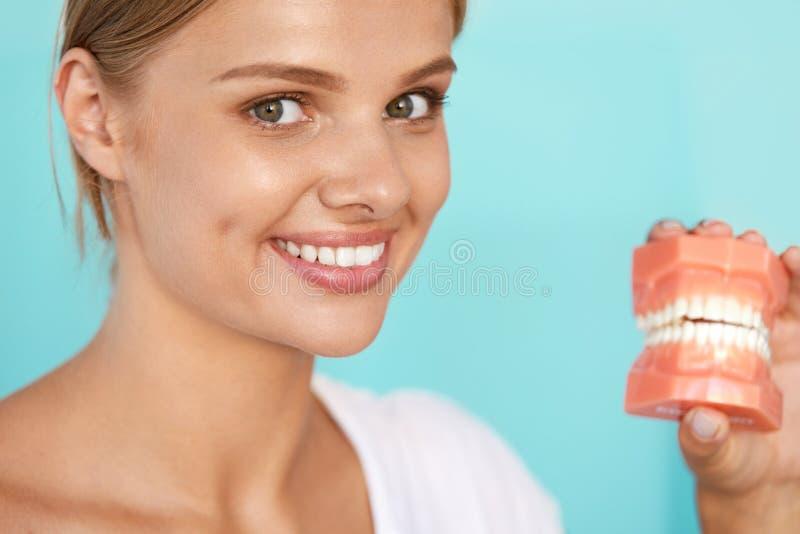 Femme avec le beau sourire, dents saines tenant le modèle dentaire photos libres de droits