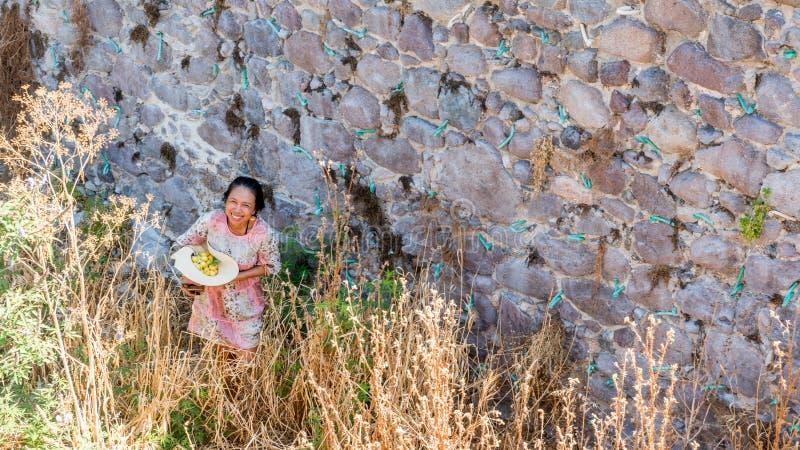 Femme avec le chapeau complètement du fruit près du sourire de mur en pierre image stock