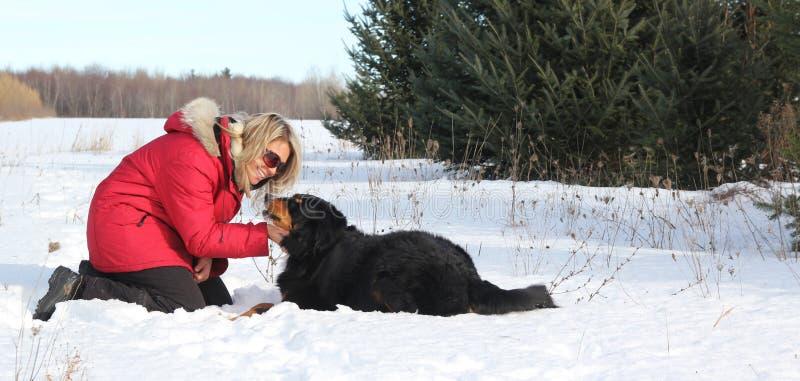 Femme avec le crabot dans la neige image libre de droits