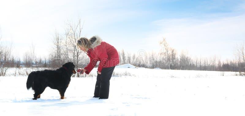 Femme avec le crabot dans la neige photo libre de droits
