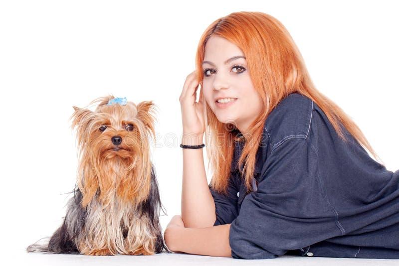 Femme avec le petit chien terrier de Yorkshire mignon images libres de droits